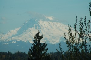 Mt.Rainier from Lisa's home.