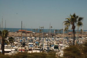 The Carlsbad Marina from Amtrak train