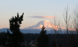 Rainier from Lisa's home