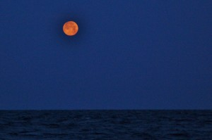 Moonrise Tuesday on Atlantic Ocean